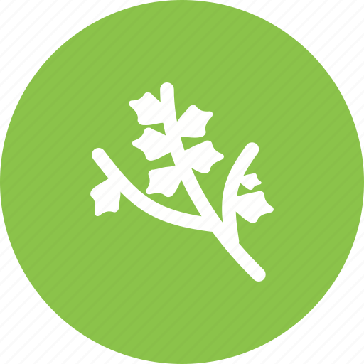 branch, branches, forest, nature, tree, wood icon