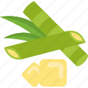 food, green, groats, seeds icon