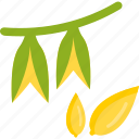 food, groats, plant, seeds icon