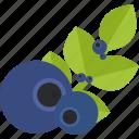 food, groats, pulm, seeds icon