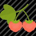 food, groats, raspberry, seeds