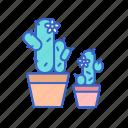 cacti, cactus, flowers, hobby, plant, pot icon