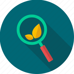 eco, ecology, leaf, magnifier, optimization, search, seo icon