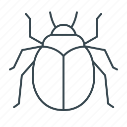beetle, bug, insect, spider, virus icon