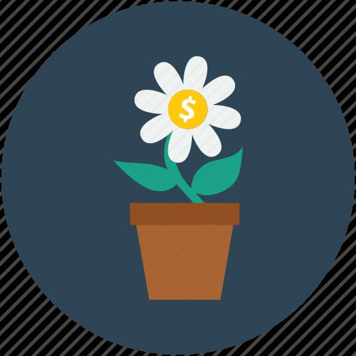 dollar sign, dollars flower, flower, money plant icon