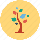 generic, nature, plant, tree icon