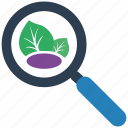 organic, search, seo icon