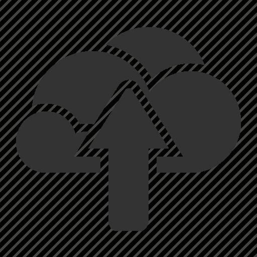 data base, share, upload icon