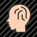 brain, brainstorming, human, internet, knowledge, skills, thoughts