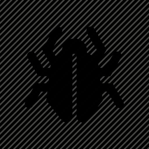 bug, code, error, optimization, seo icon