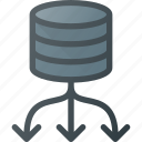 balance, data, database, load, server, store