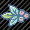 arabica, barista, coffea, coffea arabica, coffee, coffee plant, plant icon
