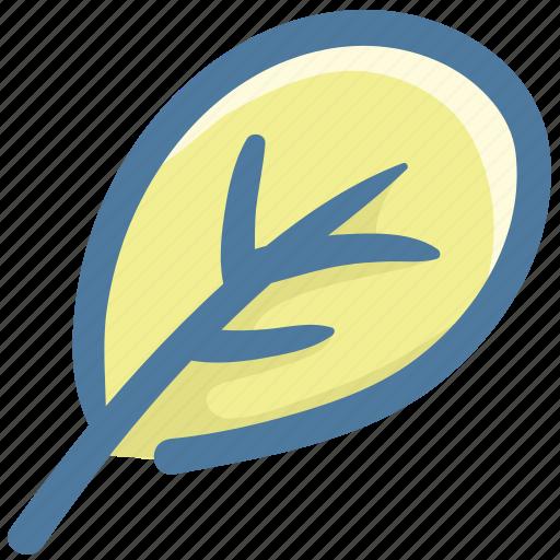 Food, leaf, nature, salad, spinach, vegetable icon - Download on Iconfinder