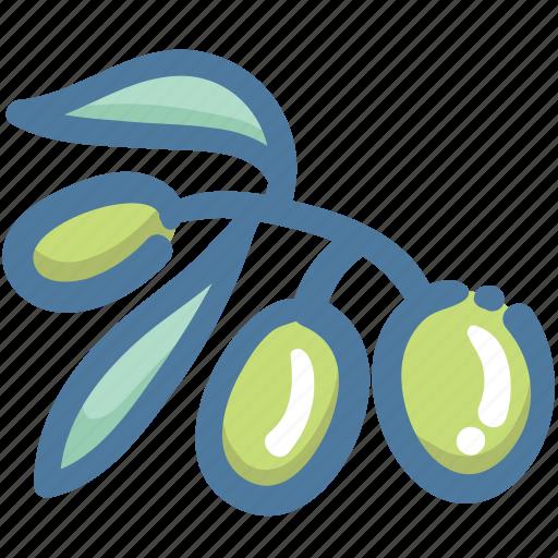 Food, kitchen, oil, olive, olive oil icon - Download on Iconfinder