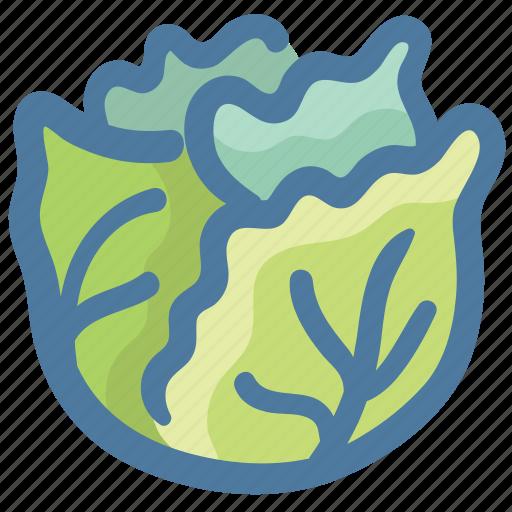 Cabbage, cabbage flower, green vegetable, salad vegetable, vegetable icon - Download on Iconfinder