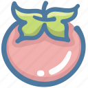 food, healthy, tomato, tomatoes, vegetable icon