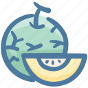 cantelope, food, fruit, melon, organic, slice icon
