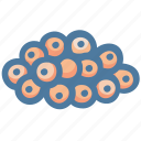 caviar, eggs, fish, food, sashimi icon