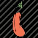 eggplant, food, vegetable, aubergine, brinjal