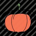 pumpkin, vegetable, halloween, orange, food, organic