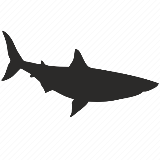 danger, ocean, sea, shark icon