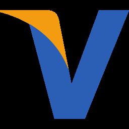 initial, v, visa icon