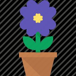 flower, leaves, plant, pot icon