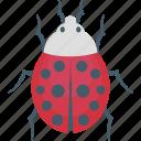 bug, bug virus, cyber hack, malicious, malware icon