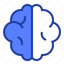 brain, brainstorm, knowledge, mind icon