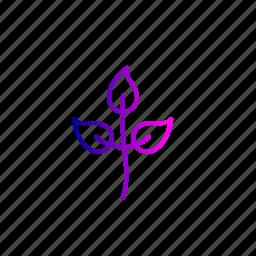 billy, bilva, leaf, leaves, patra, spitritual, worship icon