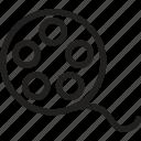 camera reel, camera reel box, camera reel line, film reel, film strip, image reel, movie reel icon