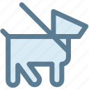 dog, leash, navigation, pet, pet dog, sign icon