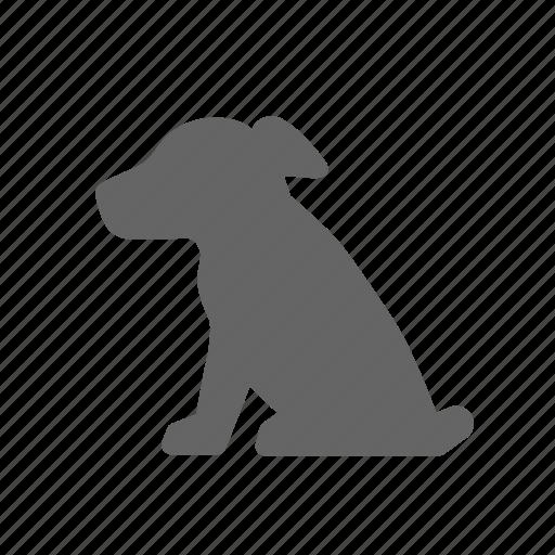 animal, cub, dog, little, pet, puppy, whelp icon