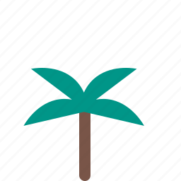 coconut, garden, nature, park, plant icon
