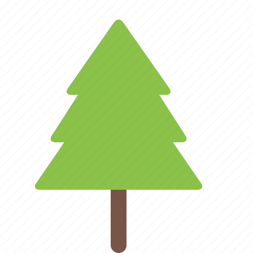 garden, nature, park, pine, plant, tree icon