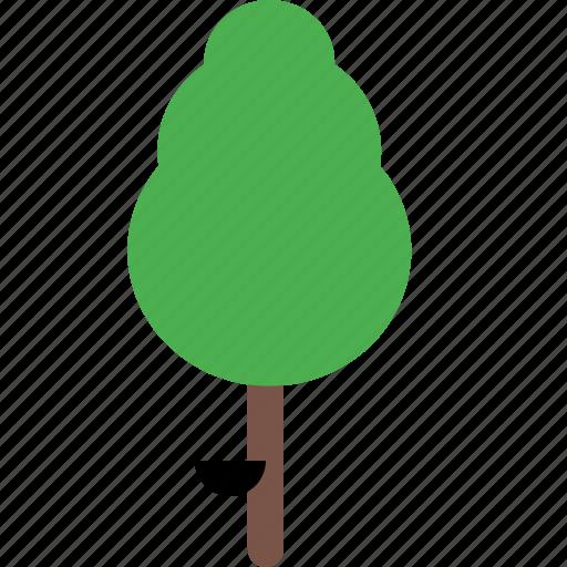 garden, nature, park, plant, rubber, tree icon