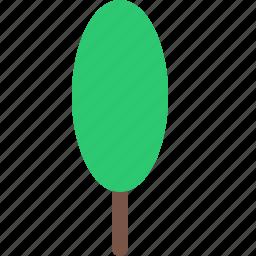 garden, nature, park, plant, tree icon