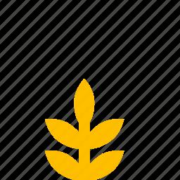 garden, nature, park, plant, rice icon