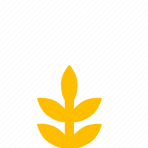 garden, nature, park, plant, rice icon