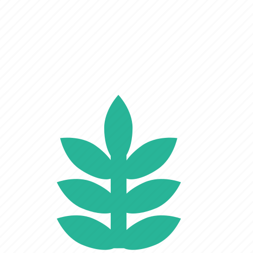 garden, grass, nature, park, plant icon
