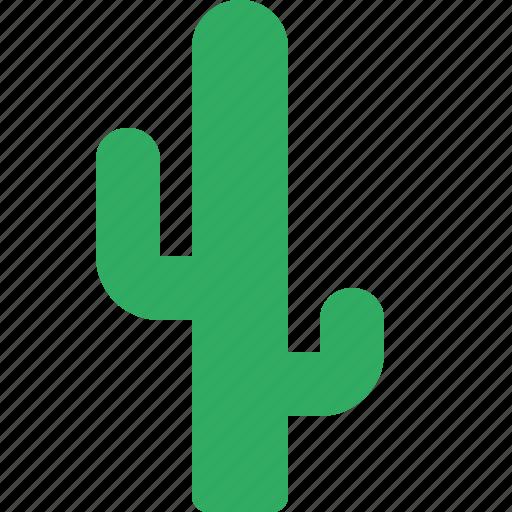 cactus, desert, garden, nature, park, plant icon