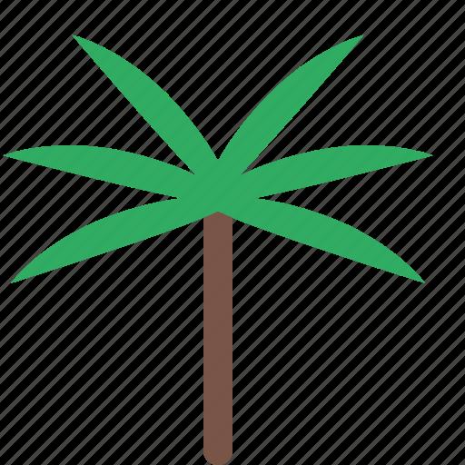 banana, garden, nature, park, plant, tree icon