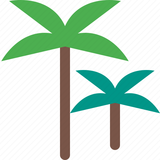 coconut, forest, garden, nature, park, plant icon