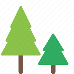 forest, garden, nature, park, pine, plant, trees icon