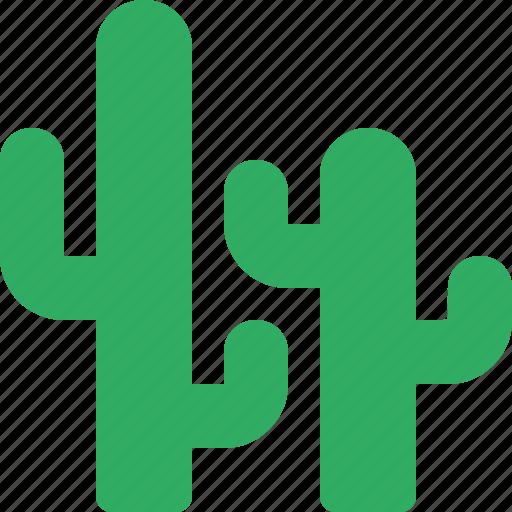cactuses, desert, garden, nature, park, plant icon