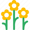 flower, grass, green, nature, park, plant, weed