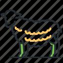 animal, farm, sheep, sleep