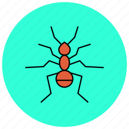 ant, bug, insects, pest icon