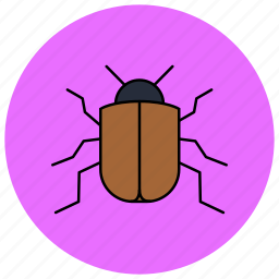 beetle, fly, insects, pest icon