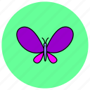 butterfly, fly, insects, nature icon
